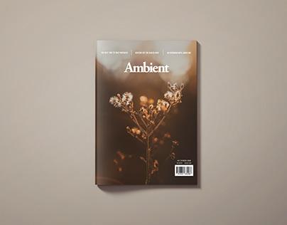 Ambient Magazine