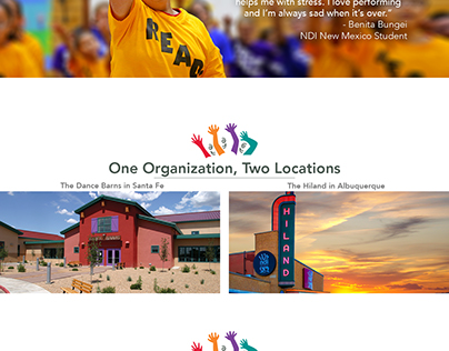 NDI New Mexico Website Design