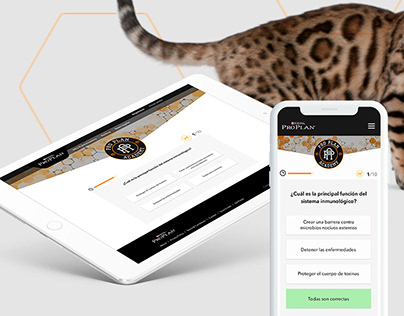 Pet Academy UI - Gamification