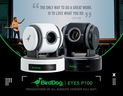 Social Media - BirdDog Production Camera