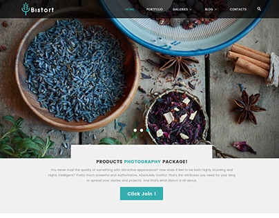 BISTORT - Creative Art Blog Multi-purpose PSD Template