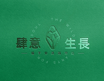 The Wild Branding \ 创意绿植 品牌VI设计
