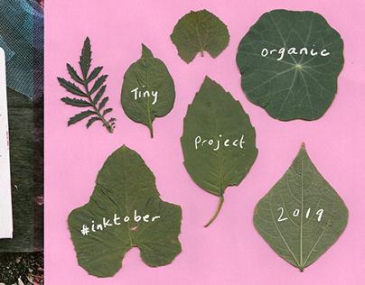 Tiny Organic Project