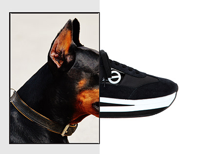 Visual for No Name Shoes
