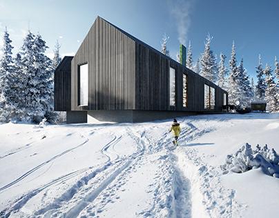 Wood Houses | Domaine Public