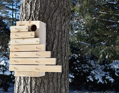 Crescendo - A Birdhouse for the Red Headed Woodpecker