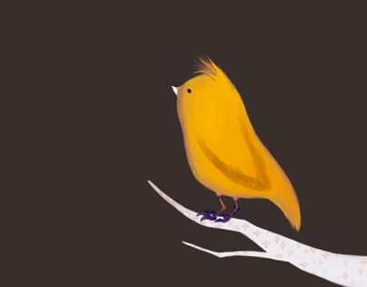 a bird waiting...
