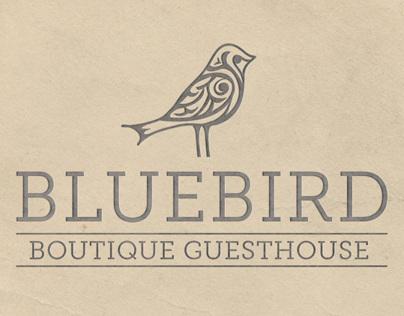 Bluebird Branding Project