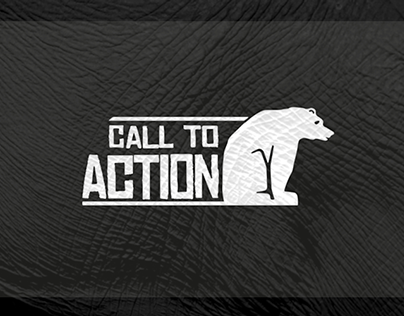 CALL TO ACTION / rebranding & strategy