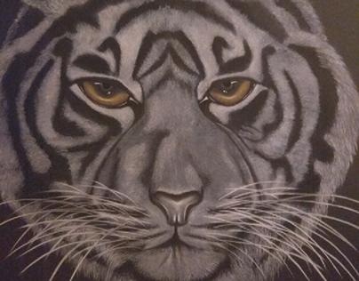 """""""El Ojo del Tigre""""."""