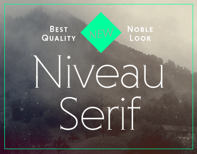 Niveau Serif (Typefamily)