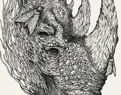 rhinoceros cephenis