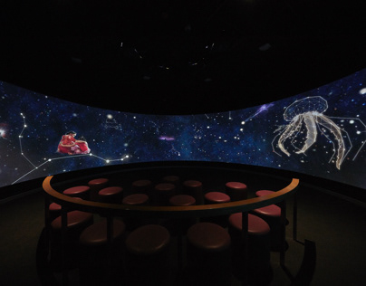 FILM INSTALLATION- INDIAN MUSIC EXPERIENCE MUSEUM