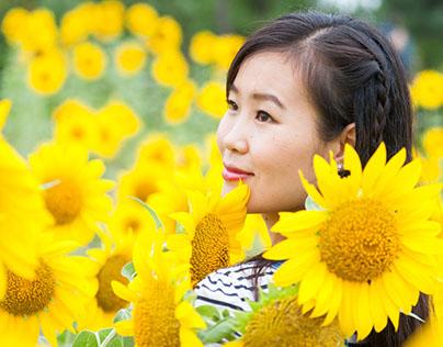 Ah! Sunflower