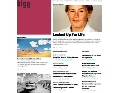 news website bigg