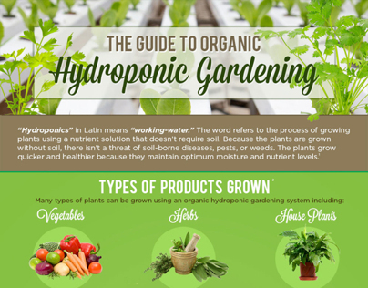 The Guide to Organic Hydroponic Gardening