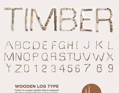 TIMBER Typeface Design and Branding Series