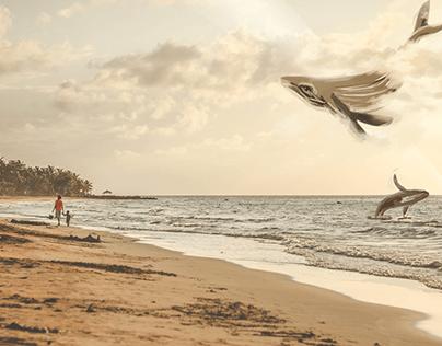 Colaboraciones con ilustradoras nicaragüenses