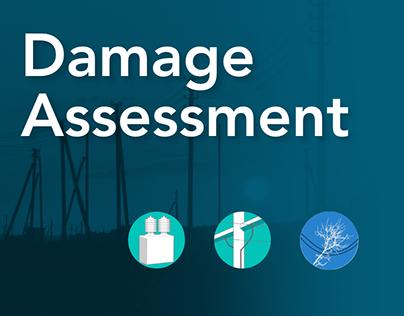 iRestore Damage assessment