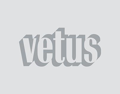 Vetus Engineering & Contracting