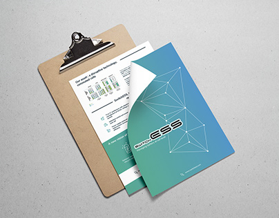 Flyer et Webdesign SwitchEss