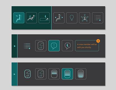 Passenger Control Unit Icons