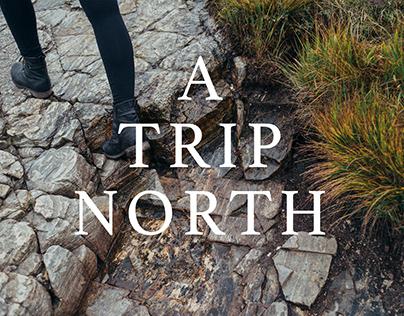 A Trip North