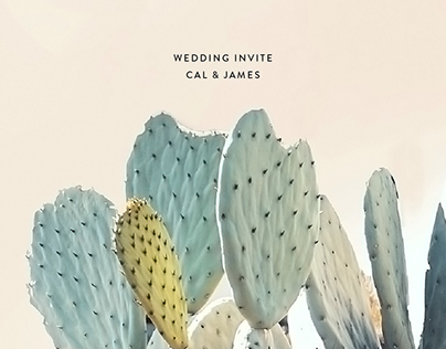Digital Wedding invite