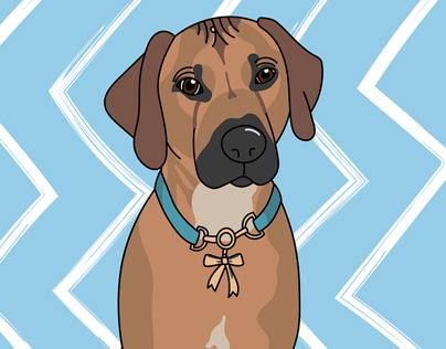 Image of: Puppy Tina Park Rebloggy Kawaii Animals On Behance