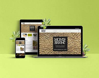 Web design - MONTEBRIONE