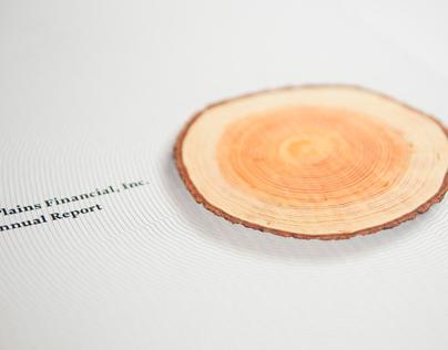South Plains Financial, Inc. Annual Report