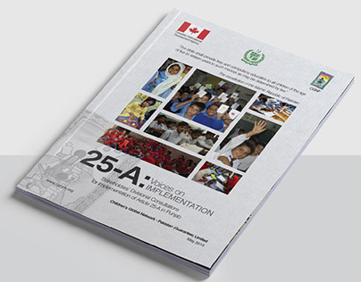 25-A Voices on IMPLEMENTATION - Report