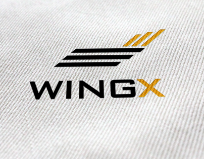 Logo and Business card for Aircraft company