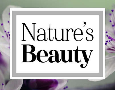 Versatile Logo for Multifaceted Brand