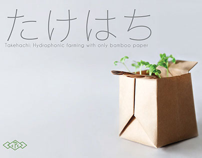 Takehachi - A bamboo paper soil based plant pot.
