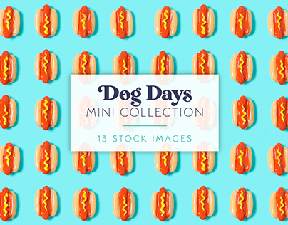 Dog Days Mini Stock Photo Collection