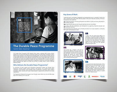 Durable Peace Programme Brochures 2017