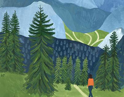 Landscape Transformations Illustrations