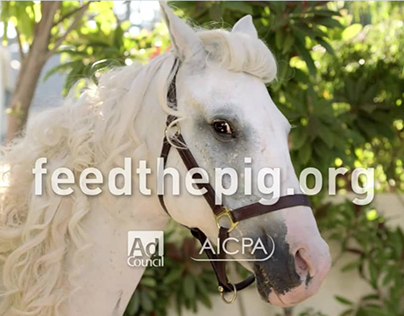 Ad Council/AICPA: Feed the Pig Campaign