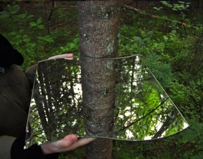 Falstadskogen Recall Exploration