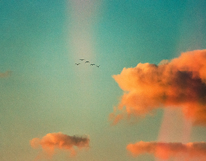 Dream up in the Clouds (Film Photography)
