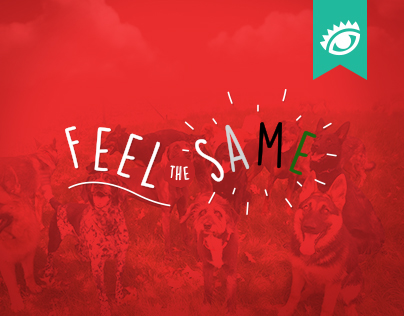 Feel The Same / El Ojo de Iberoamerica 2016