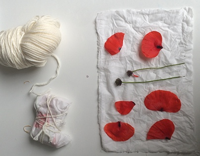 Experimentation with Natural Dye