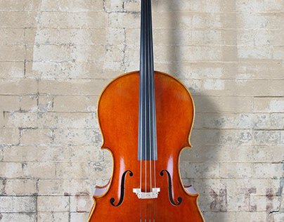 5 Ways To Extend The Lifespan Of Your Cello Bow