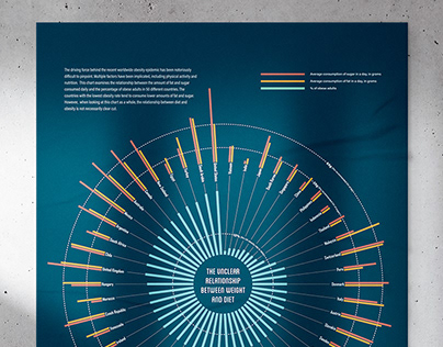 Diet Statistics Infographic
