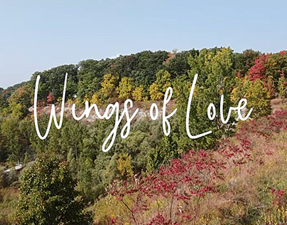 Wings Of Love - Title Sequence