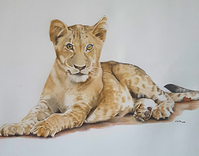 Commissioned Drawing (SOLD)