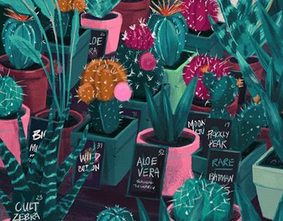 🧠 Anthropologie: Prickly plants appreciation!