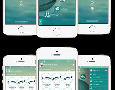UX/UI Mobile Application Design