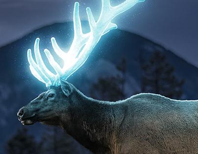 Glowing Antlers
